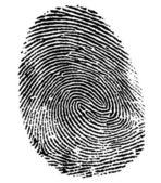 Perfect thumb fingerprint — Stock Photo