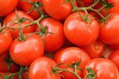 Full frame tomato background — Stock Photo