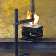 Burning vise and hard disks — Stock Photo