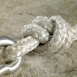 Snap hook and knot detail — Stock Photo