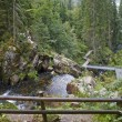 Around Triberg Waterfalls at summer time — Stock Photo