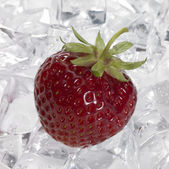 Red strawberry on ice — Stock Photo