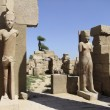 Statues around Precinct of Amun-Re — Stockfoto