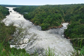 River Nile around Murchison Falls — Stok fotoğraf