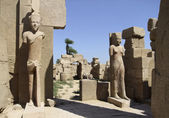 Statues around Precinct of Amun-Re — Stock Photo