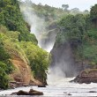 Stock Photo: Pictorial Murchison Falls
