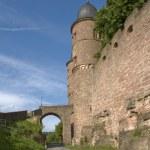 Wertheim Castle detail at summer time — Stock Photo