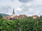 Village in Alsace — Stock Photo