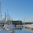 Boston harbour in sunny ambiance — Stock Photo #7656218