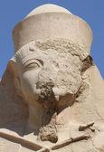 Ramses II — Stock Photo