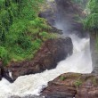 Stock Photo: Raging torrent at Murchison Falls