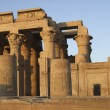 Kom Ombo temple detail — Stock Photo