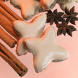 Cinnamon stars and spice — Stock Photo