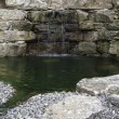 Stone wall and pond detail - Stock Photo