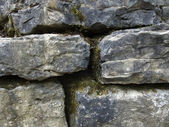 Mossy stone wall detail — Stock Photo