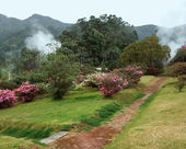 Geothermic activity at the Azores — Stock Photo