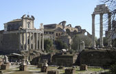 Forum Romanum at summer time — Stock Photo