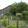 Stock Photo: Allotment garden and utility shed