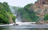 Idyllic view around the Murchison Falls — Stock Photo