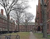 Harvard Yard in Cambridge — Stock Photo