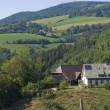 Stock Photo: Idyllic peaceful Black Forest scenery