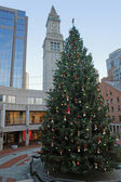 Christmas scenery in Boston — Stock Photo