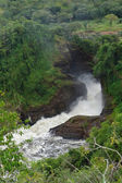 Murchison Falls in Uganda — Stock Photo
