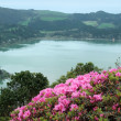 Lakeside scenery at lagoa das sete cidades — Stock Photo