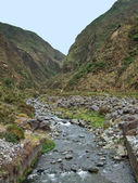 Small stream at the Azores — Stock Photo