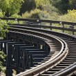Train rails — Stock Photo #7557934