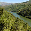 Stock Photo: Banks of Douro river, Portugal