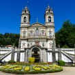 Bom Jesus de Braga, Portugal — Stock Photo #6934566