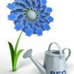 SEO flower — Stock Photo