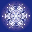 Abstract isolated vector snowflake — Stock Vector