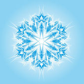 Abstract isolated vector snowflake — Cтоковый вектор