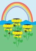 Girasoles y arco iris — Vector de stock