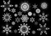 Copo de nieve resumen vector aislada — Vector de stock