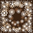 Floral winter frame with snowflakes — Wektor stockowy #7403850
