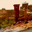 Siena Tuscany Italy - Stock Photo