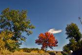 пейзаж, тоскана, италия, сельской местности, — Стоковое фото