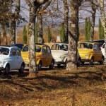 Popular Car 500 fiat — Stock Photo #7469691