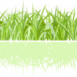 Green grass on white background — Stock Vector #7172470