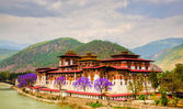 Pumakha Dzong — Zdjęcie stockowe