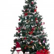 Christmas tree — Stock Photo #6997071