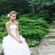 Beautiful bride in white dress — Stockfoto #7005034