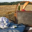 Wedding picnic — Stock Photo