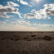 Gobi desert — Stock Photo