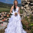 Стоковое фото: Beautiful bride posing in her wedding day