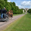 The Long Walk in Windsor Great Park in England with Windsor Castle in the b — Stock Photo