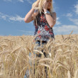 Happy woman in golden wheat field — ストック写真 #7193397